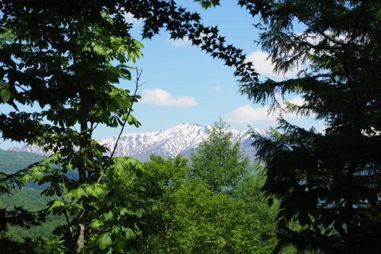 <T_013>登山ビギナーの大日ヶ岳トレッキングレポート サムネイル