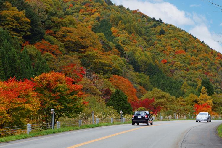 せせらぎ街道・めいほう高原紅葉狩りコース「温泉と、おいしいものと良い景色。明宝エリアをぐるっとドライブ」