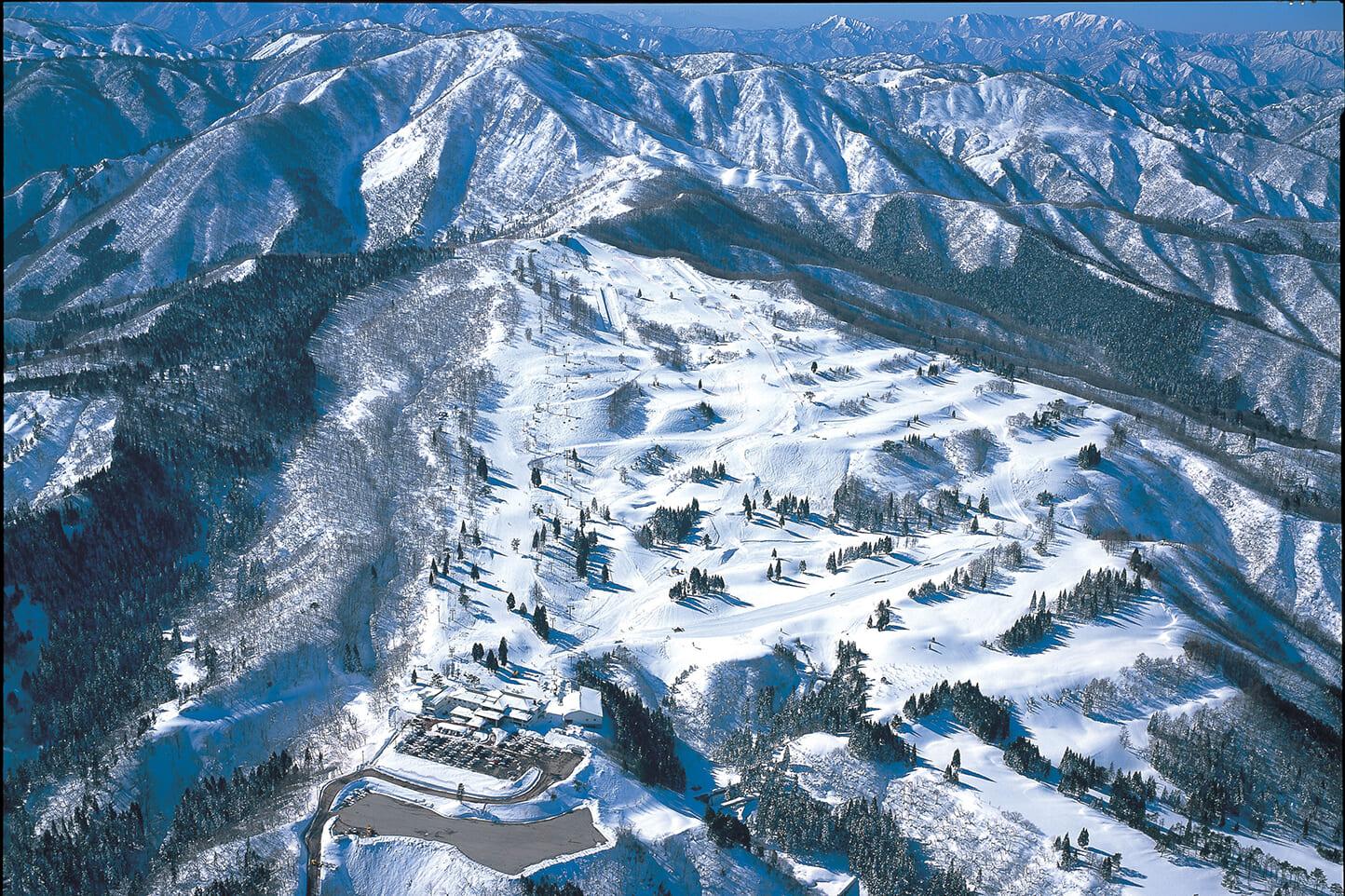 白鳥高原ホテル スライダー画像3