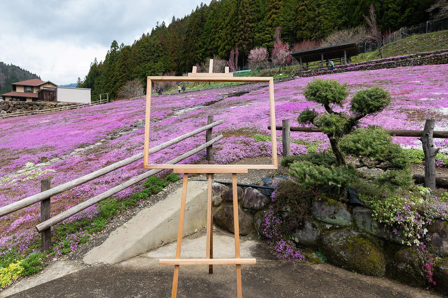 國田家の芝桜 スライダー画像3