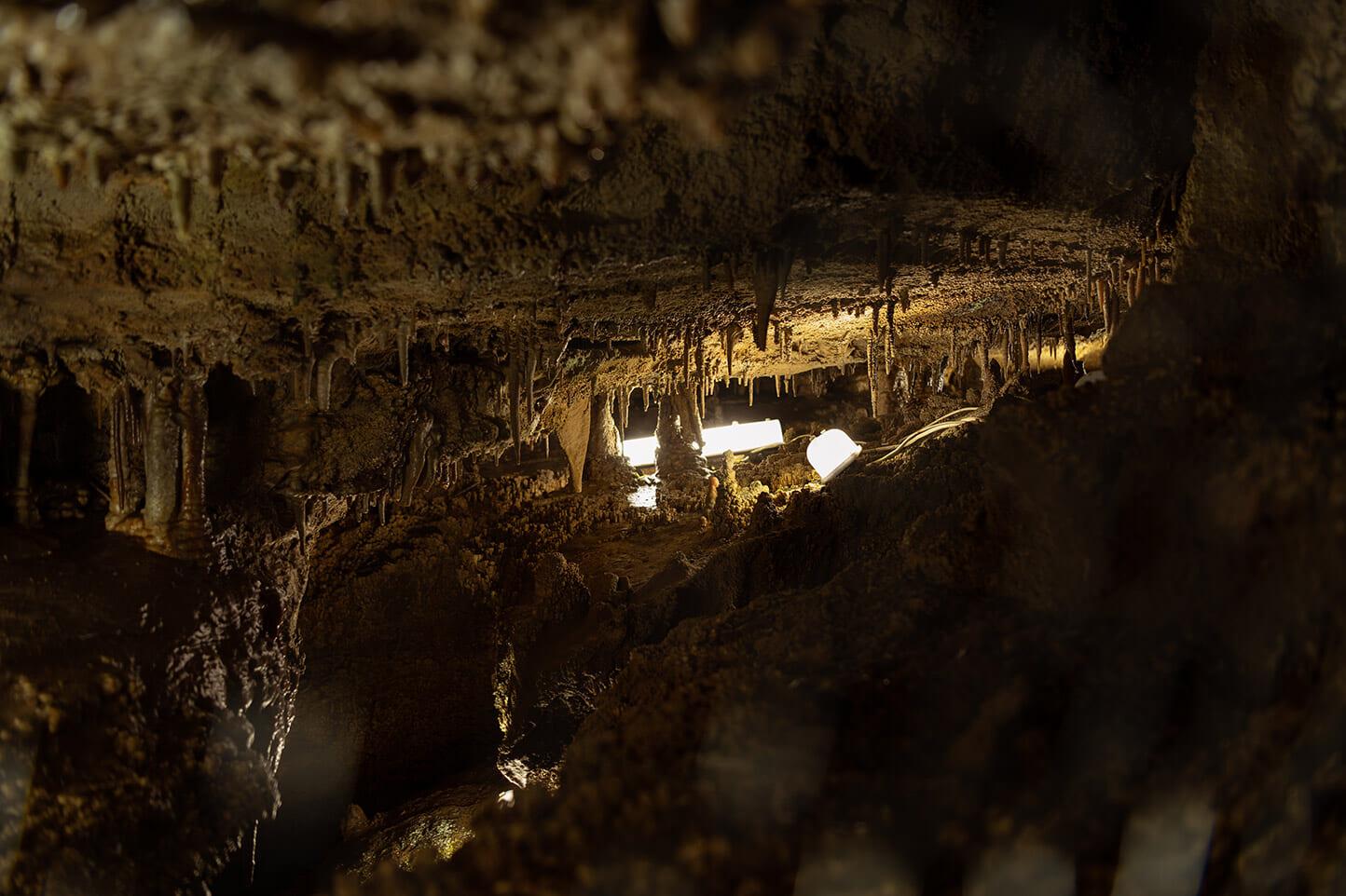 大滝鍾乳洞・縄文洞 スライダー画像3
