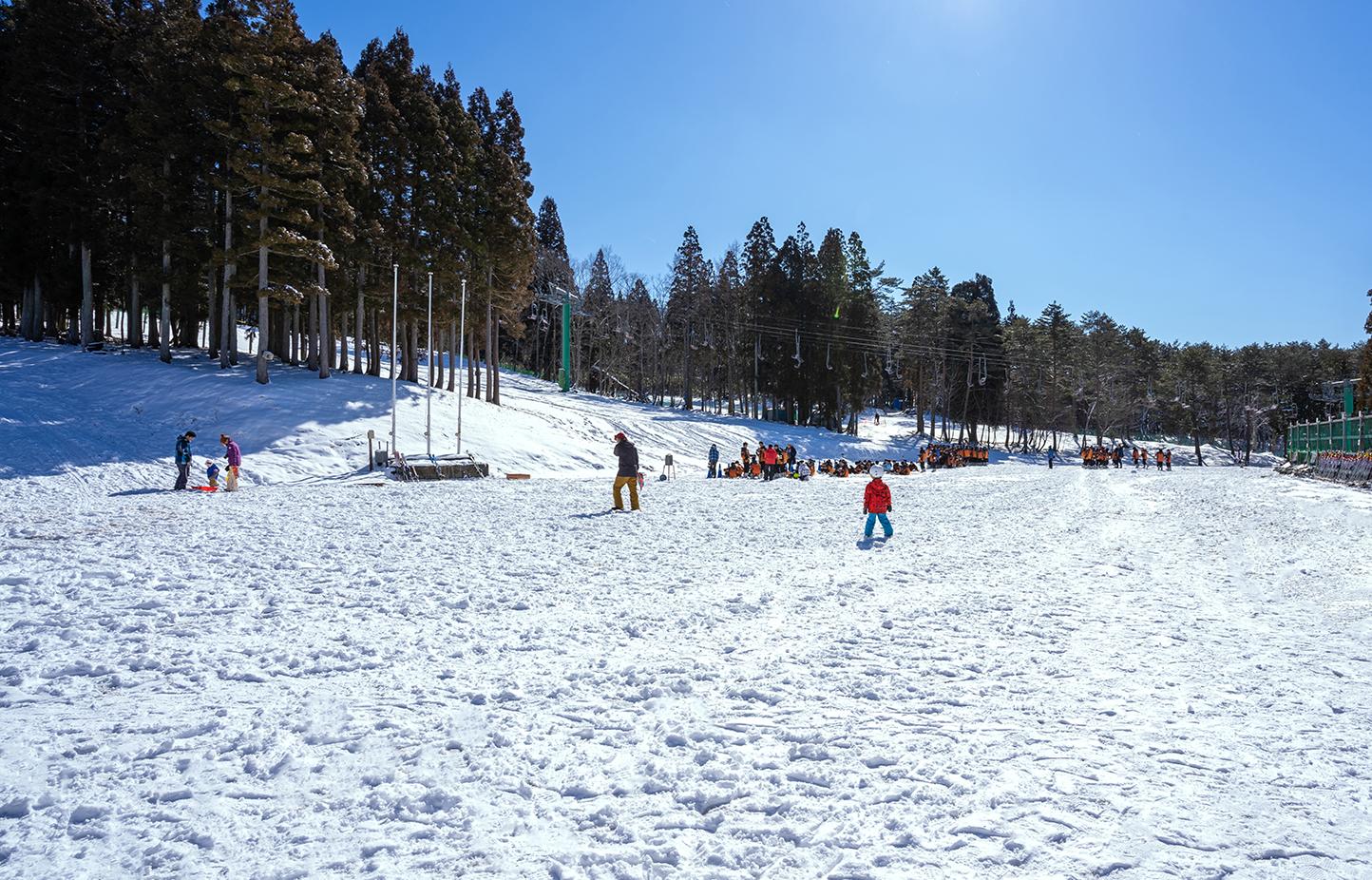 郡上ヴァカンス村スキー場 スライダー画像1