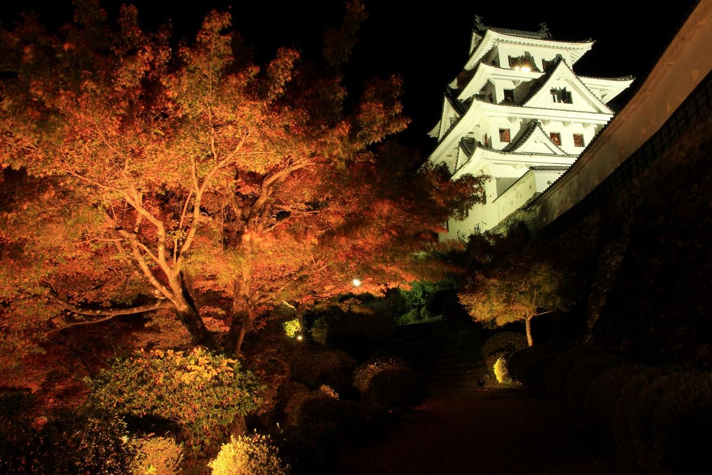 郡上八幡の紅葉 ライトアップ スライダー画像1