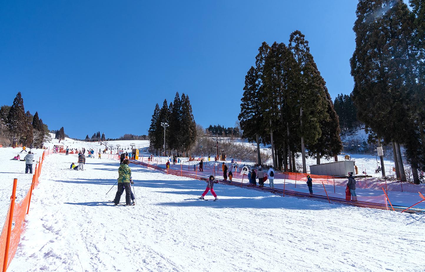 鷲ヶ岳スキー場 スライダー画像2