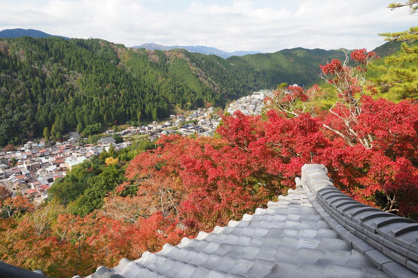 郡上八幡城の紅葉 スライダー画像2