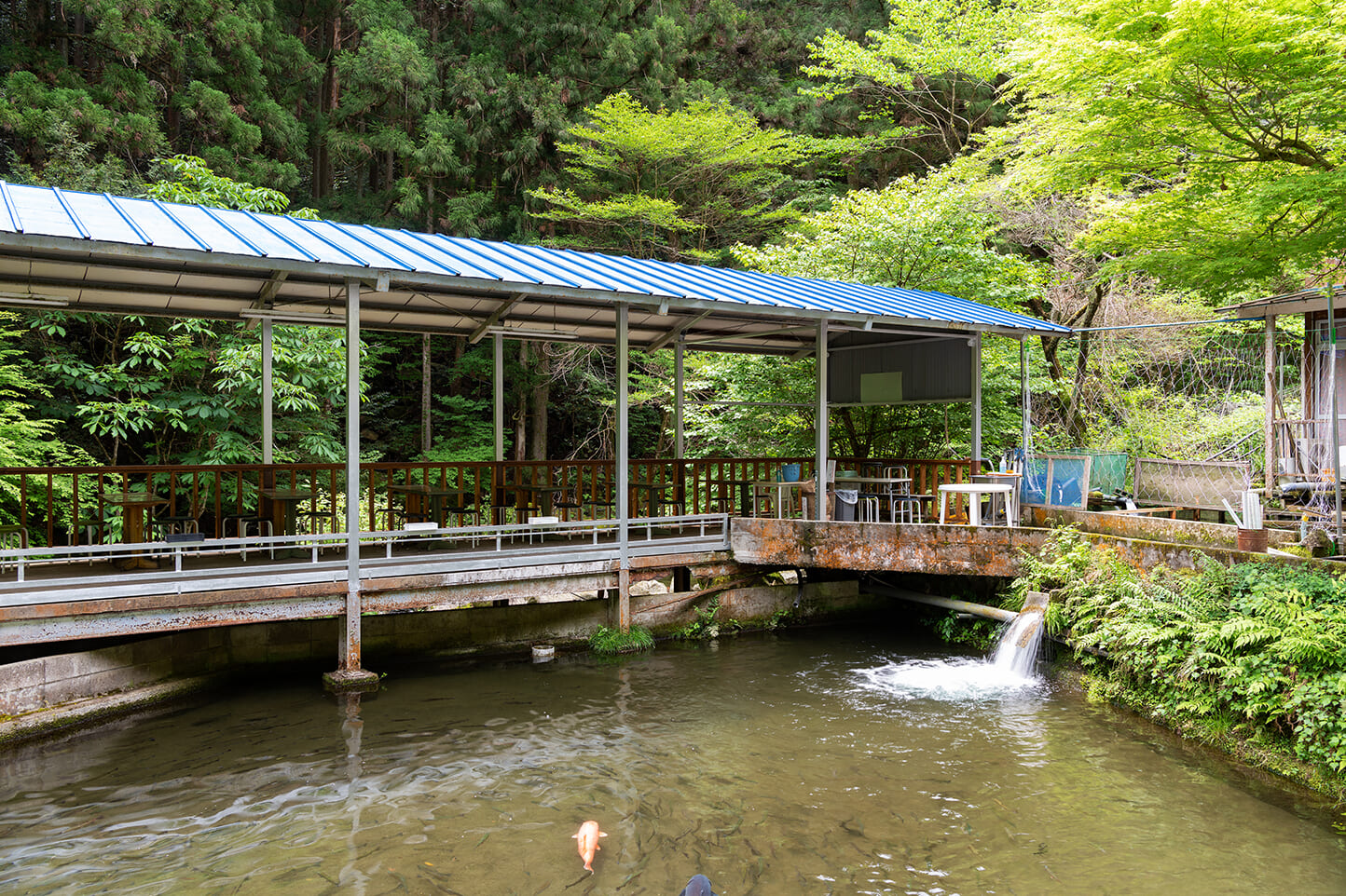 釜ケ滝ます園 スライダー画像3