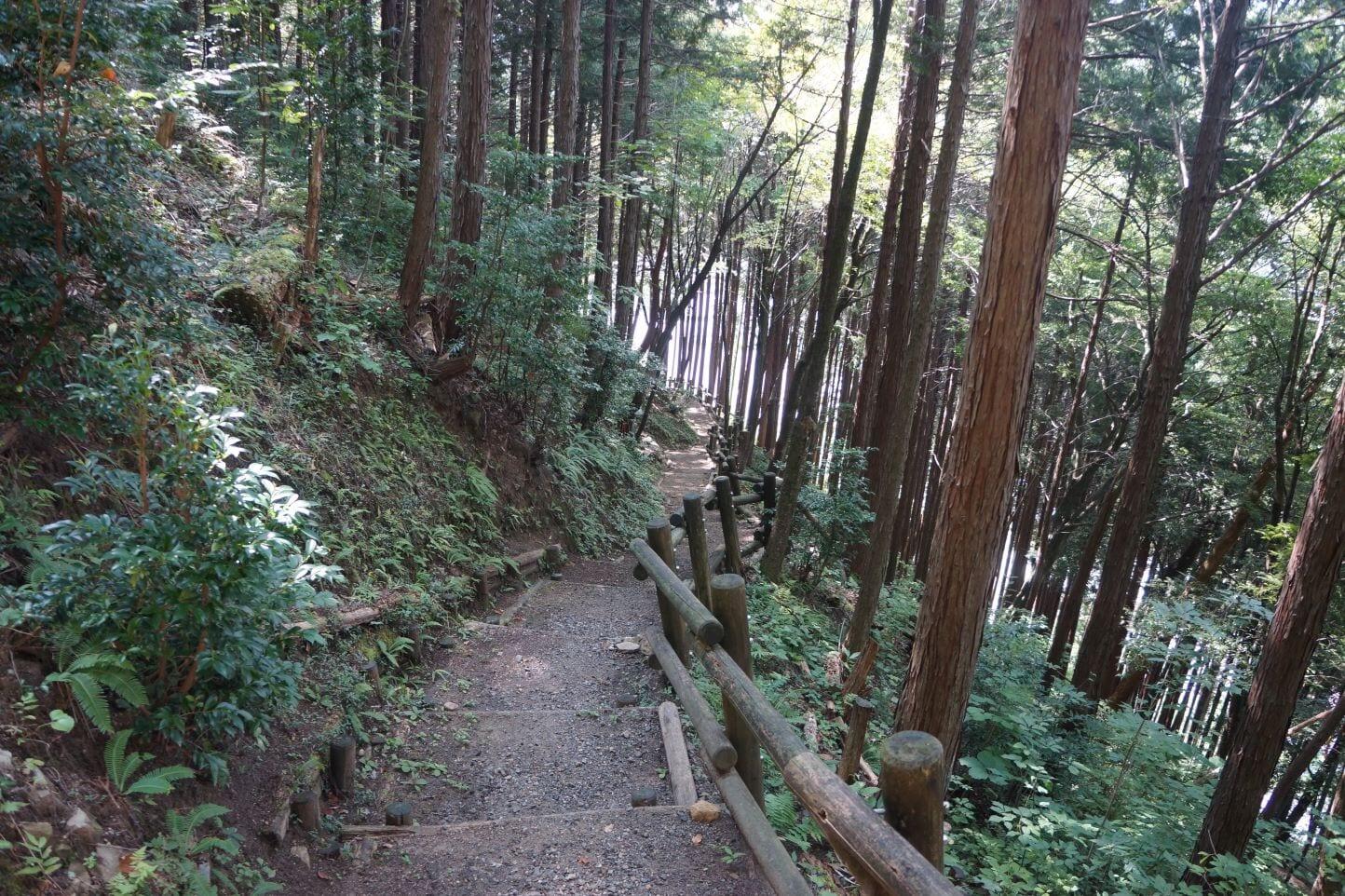 白雲山やすらぎの森 スライダー画像3