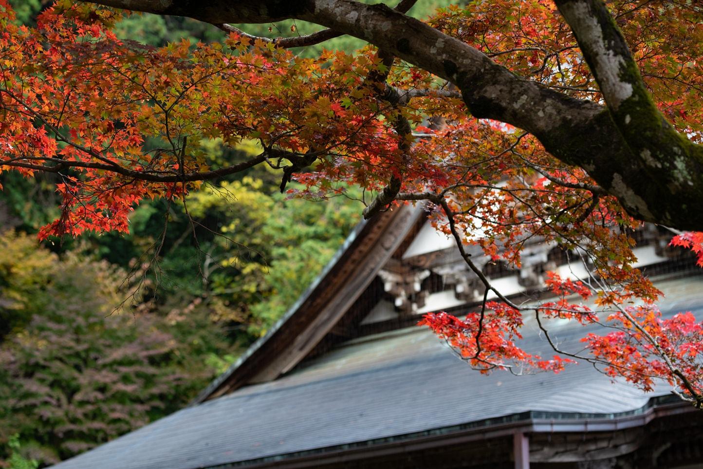 大乗寺 スライダー画像3