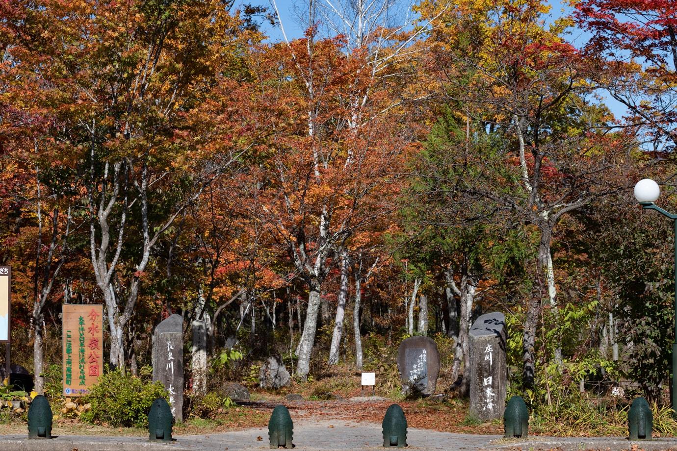 分水嶺公園の紅葉 スライダー画像2