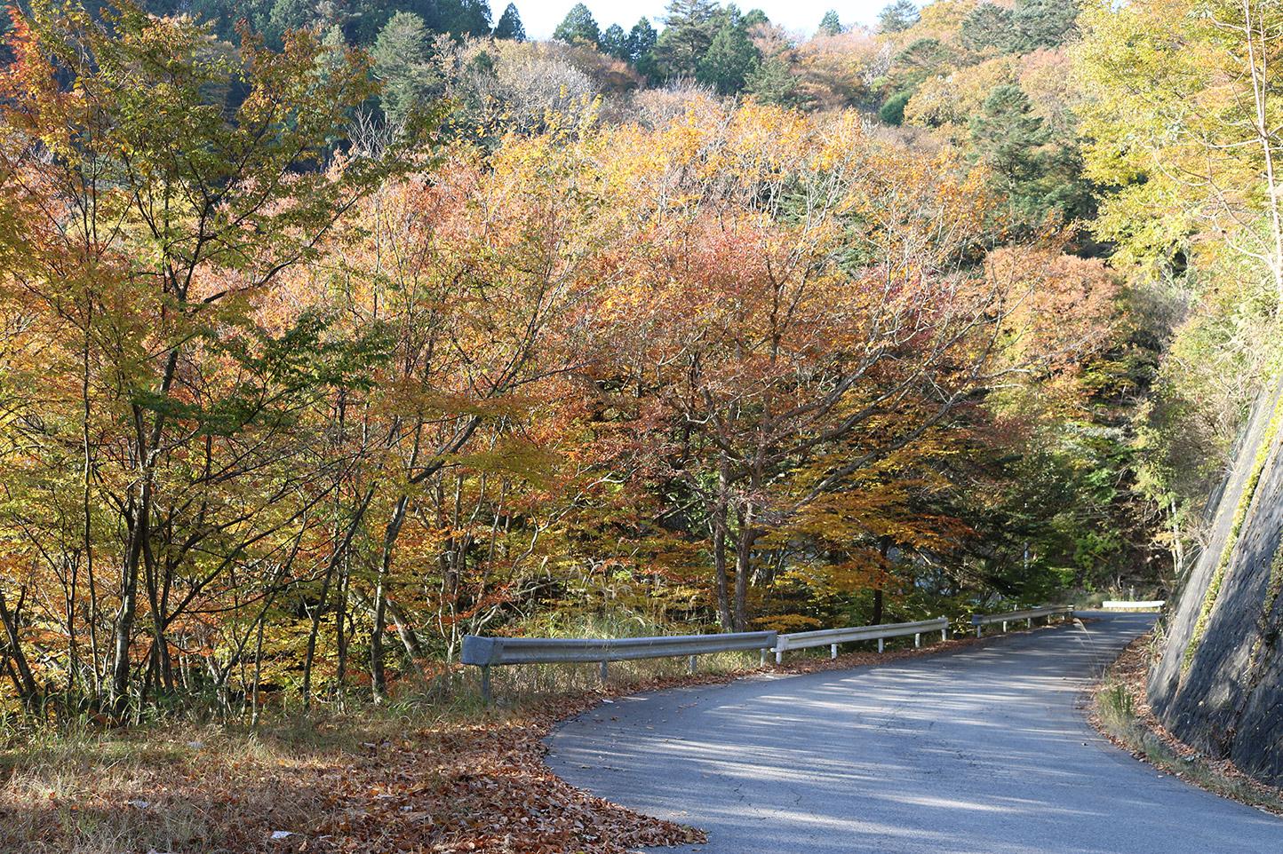 小川峠 スライダー画像1