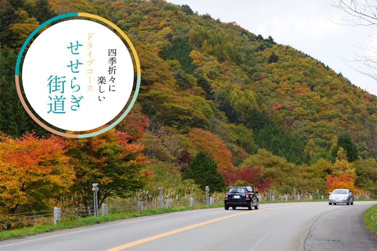 <M_030>せせらぎ街道 四季折々の楽しみがあるドライブコース