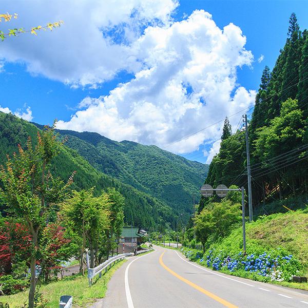 一年を通して見どころが尽きない、大自然を爽快に走り抜けるドライブコース