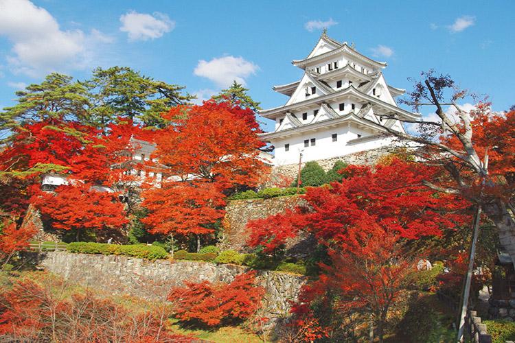 城下町から山里へと秋を巡るコース