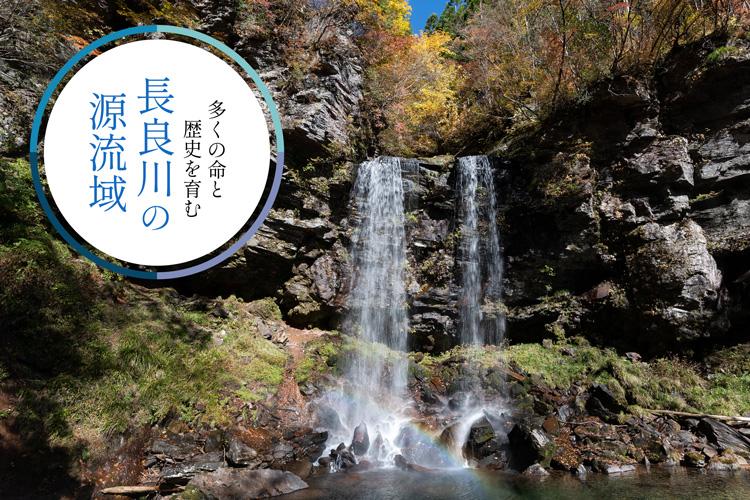 <M_026>多くの命と歴史を育む「長良川」の源流域