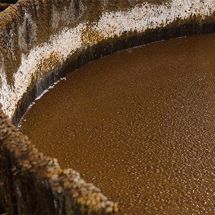 <M_003>FERMENT Gujo - 発酵のまち郡上