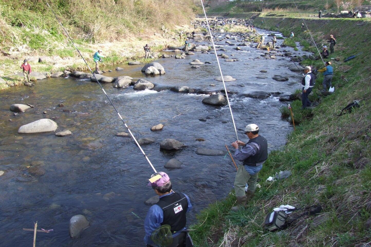 明宝 渓流釣り大会 スライダー画像2