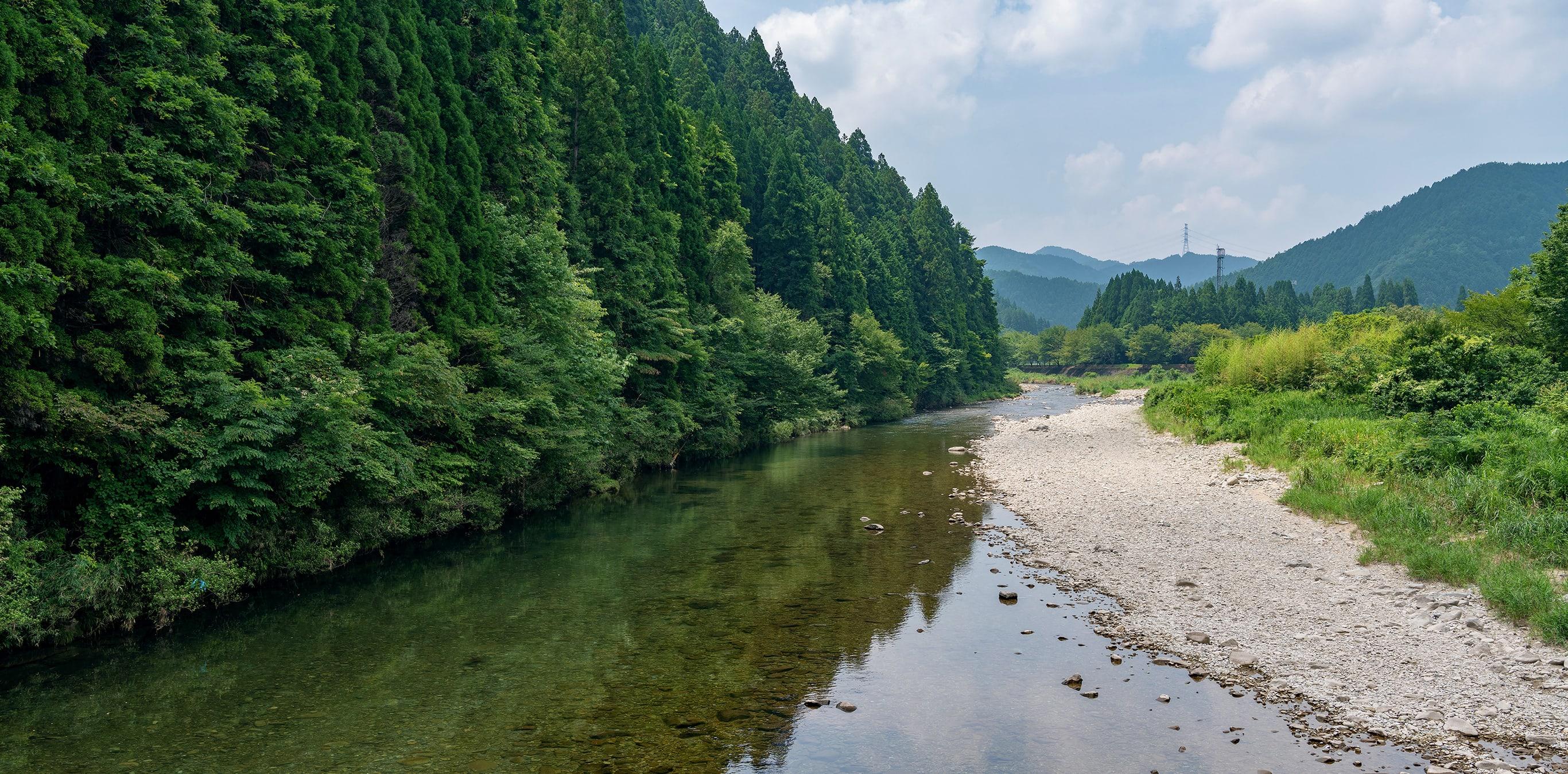 和良川と和良鮎 地層が育む、絶品の鮎 1
