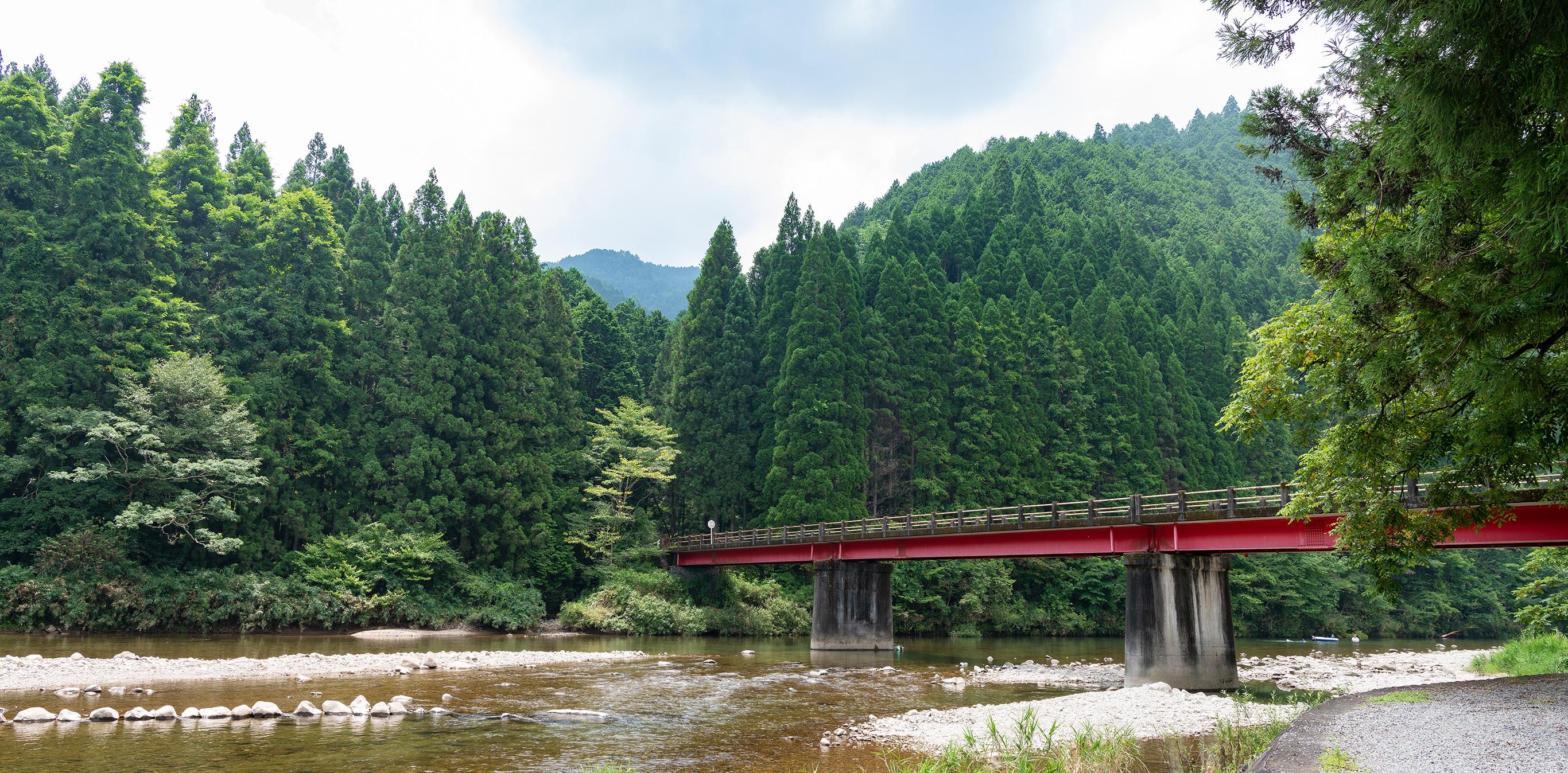和良川と和良鮎 地層が育む、絶品の鮎 2