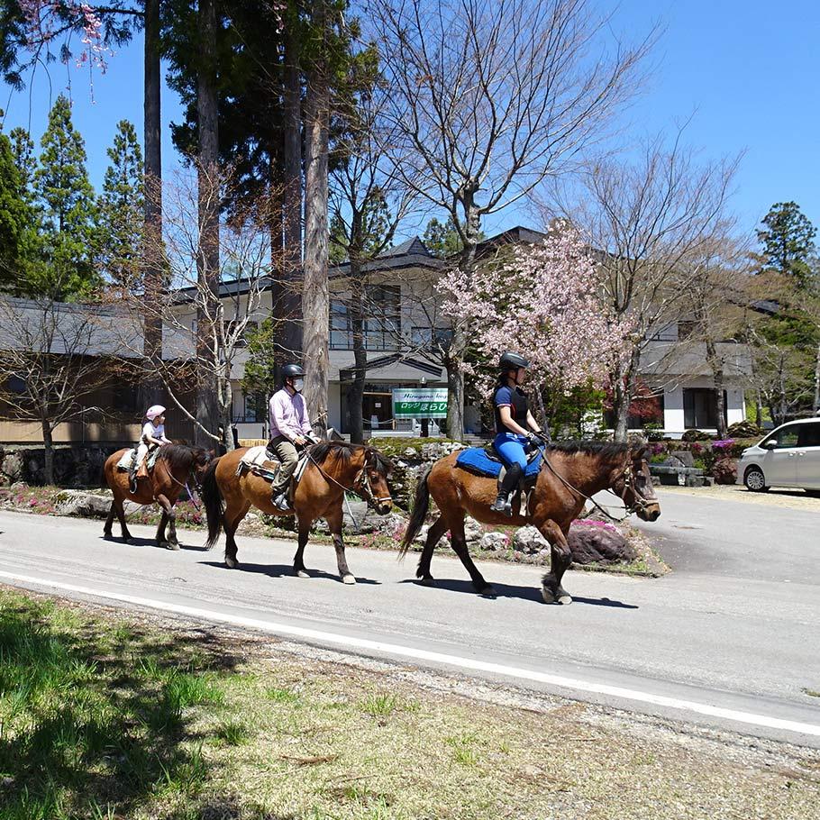 乗馬体験4