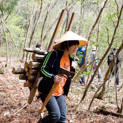 郡上の農林業体験「間伐」